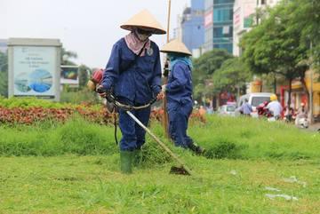 Hà Nội ấn định số lần cắt cỏ mỗi năm