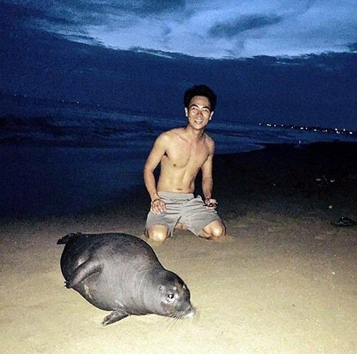 Hải cẩu bị đánh chết và nỗi oan của người dân Phan Rí Cửa