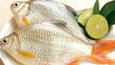 Mẹo giữ cá tươi đến 3 ngày không cần tủ lạnh