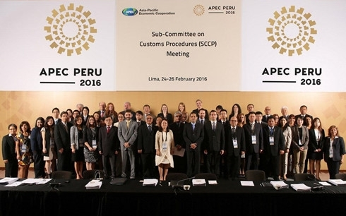 APEC: Motivation for regional growth and integration