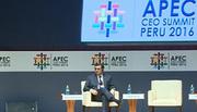 APEC kiên trì mục tiêu tự do hóa trước bối cảnh chủ nghĩa bảo hộ trỗi dậy