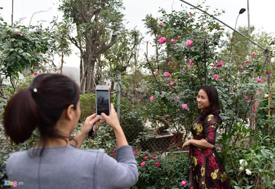 Hoa hồng Thái Lan, Sa Pa giá hàng chục triệu chơi Tết - ảnh 6
