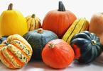 Thực phẩm mùa đông chống ung thư