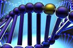 Phát hiện gen mới điều chỉnh sự di căn của ung thư