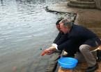 Tục lệ thả cá chép trong ngày 23 tháng Chạp có ý nghĩa gì?