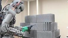 Cảnh báo robot cướp việc làm, 'đòi' nhân quyền