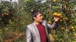 9X tật nguyền thu tiền tỷ nhờ vườn ươm cây giống xuất ngoại