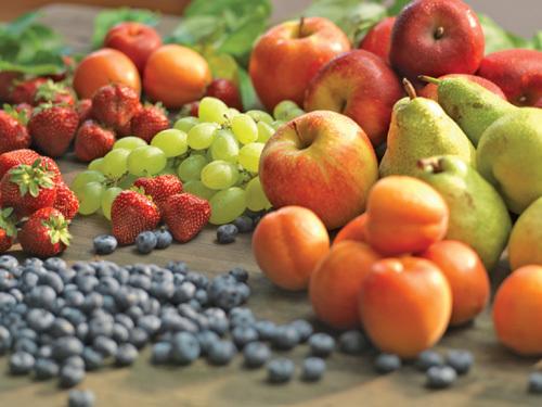 Phân biệt thực phẩm hữu cơ Organic và thực phẩm sạch