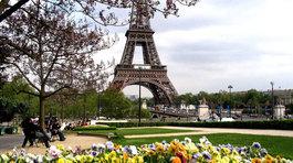 Ghé châu Âu xem hoa xuân đua nở