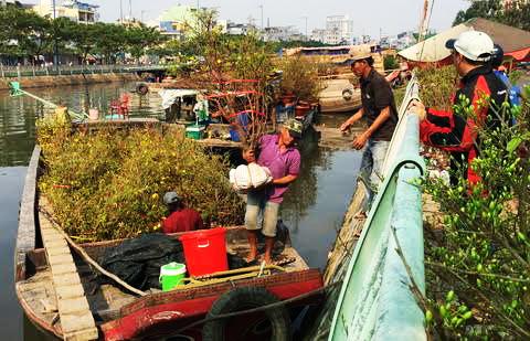 chợ hoa, kênh Tàu Hủ, thị trường, mua sắm, bến Bình Đông