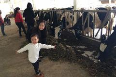 40 năm chăn bò mua ôtô, tỷ phú chân đất làm du lịch kiểu Tây