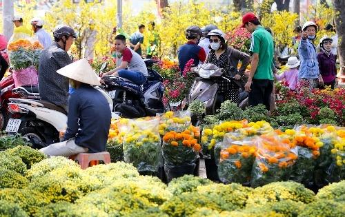 Ngày cuối năm, người Sài Gòn đổ xô đi mua hoa giảm giá