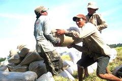 Năm ngoái, Việt Nam nhập 400.000 tấn gạo từ Campuchia