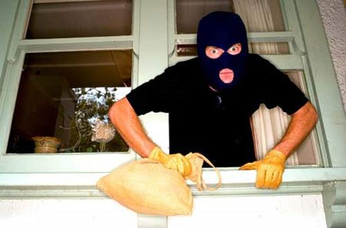 vu khống, pháp luật, trộm cắp