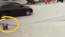 Em bé bị xe buýt đâm vì đi vệ sinh giữa đường