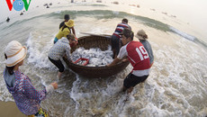 Yêu cầu duy trì quan trắc môi trường biển 4 tỉnh miền Trung