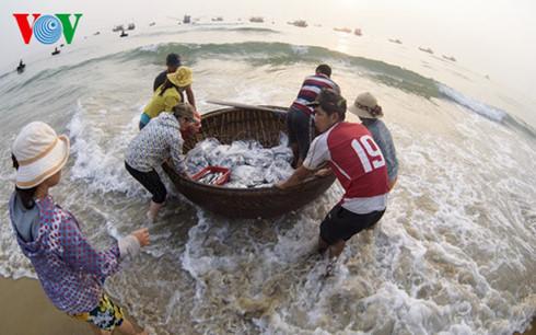Formosa xả thải, Formosa, sự cố môi trường, Bộ TN&MT, chất lượng nước biển