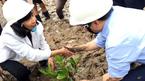 Bộ trưởng lội bùn trồng cây trong đất ngập nước