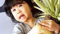 Lâm Đồng: Củ cải nặng 5,5kg hiếm có