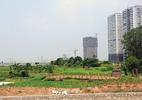 """Hà Nội: """"Điểm tên"""" 8 doanh nghiệp nợ hơn 11 tỷ tiền thuê đất"""