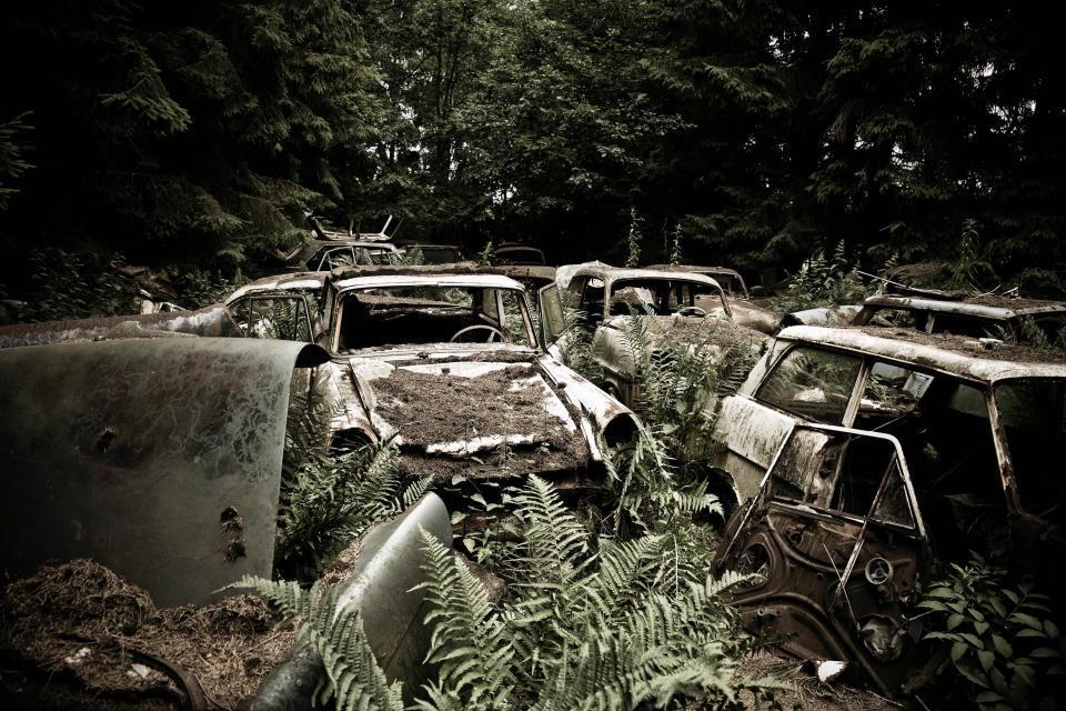 Những 'nghĩa địa' đẹp ngỡ ngàng