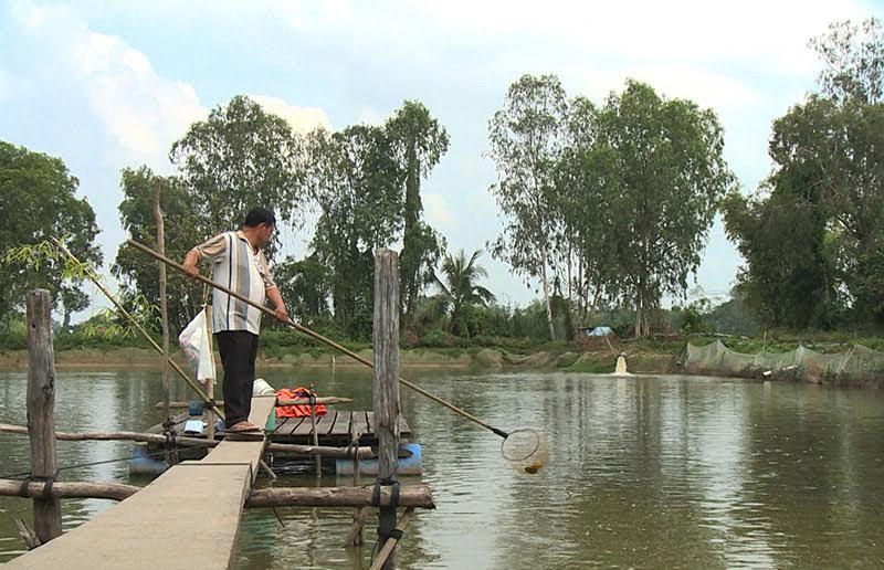 Đại gia thuỷ sản đi nước ngoài, nông dân kêu cứu