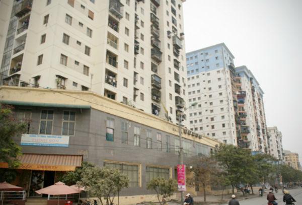 Chuột 'đại náo' chung cư Hà Nội: Khổ lắm nhưng bó tay