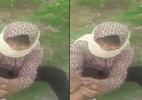 Xuất hiện phụ nữ bịt mặt nghi bắt cóc trẻ em