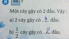Tranh cãi kết quả bài toán tính số đầu gậy của học sinh lớp 2
