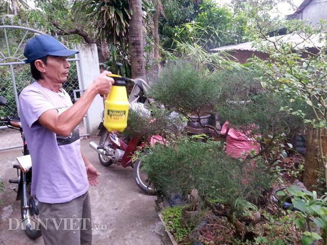 Chiêu lạ: Dùng bia để tưới cây, bón nấm ở Phú Yên - ảnh 6