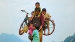 Phim Việt tranh giải tại Mỹ