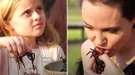 Clip Angelina Jolie và các con ăn nhện, bọ cạp gây sốt