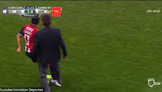 Phì cười với cảnh HLV lao vào sân hạ đo ván cầu thủ