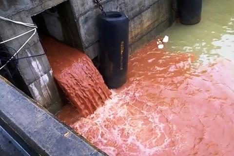Clip cống xả thải nghi của Formosa quay tại cảng Tiên Sa