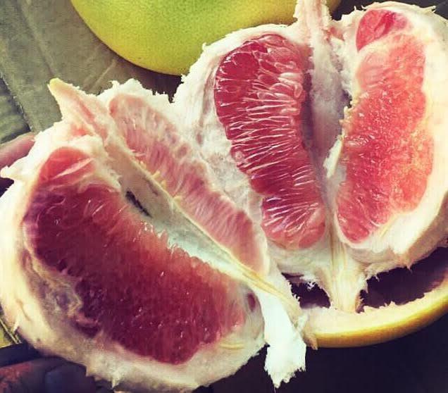 Ham của lạ, dân Việt ăn bưởi Mỹ giá nửa triệu/quả
