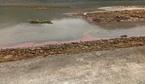 Xuất hiện dải nước đỏ ở vùng biển Hà Tĩnh