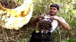 10 clip 'nóng': Bốc hàng nghìn con ong thả vào áo ngực