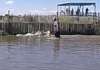Khoảnh khắc kinh hoàng người đàn ông lội dưới đầm đầy cá sấu