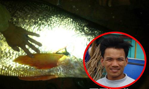 Bắt được cá sủ vàng bán lấy balô đầy tiền 1,6 tỷ đồng