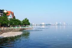 Dừng toàn bộ việc nuôi cá Hồ Tây