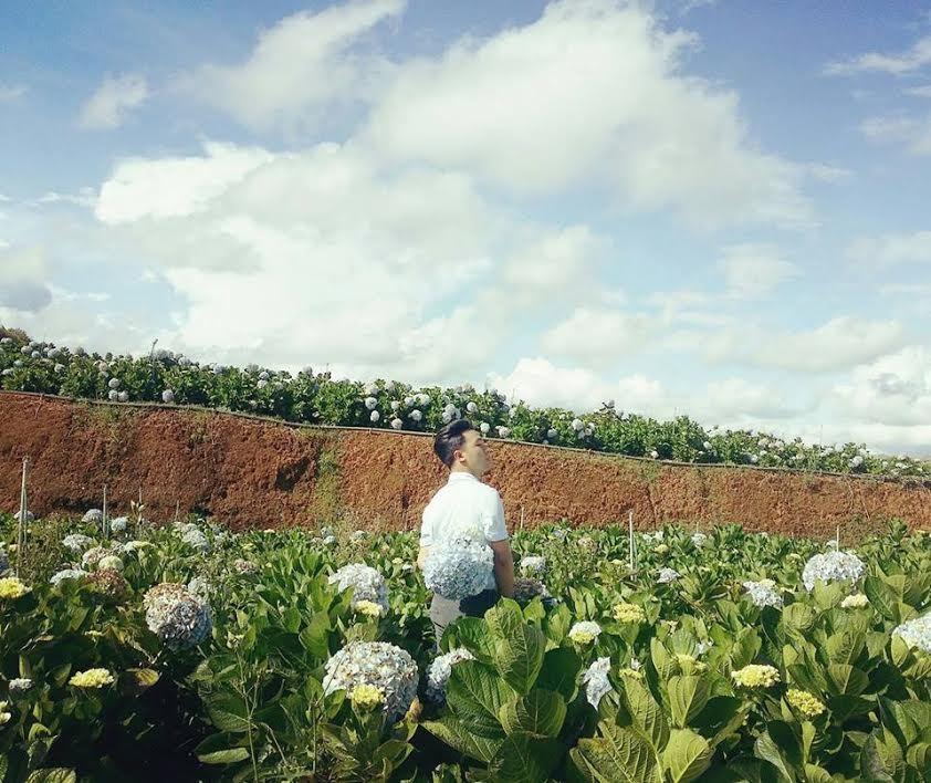 Giới trẻ ngây ngất trước vườn hoa cẩm tú cầu ở Đà Lạt