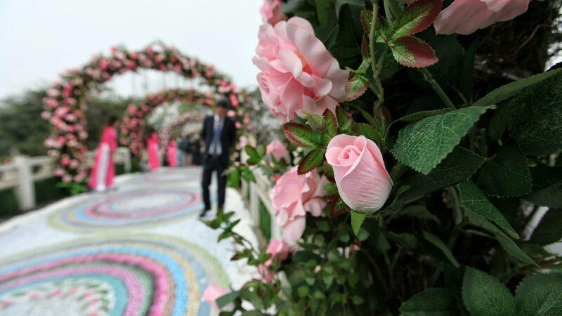Lễ hội hoa hồng Bulgaria: Người xem thất vọng vì hoa giả, hoa héo