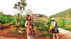 Nữ Phó giám đốc sở nghi bẻ hoa ở Đà Lạt