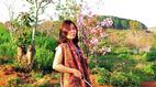 Bình Thuận làm rõ vụ nữ Phó giám đốc sở bẻ hoa