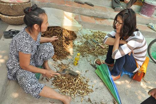 Những người phụ nữ làm nên diện mạo thảo dược Việt