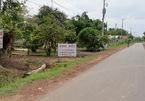Cò đất kiểu mới: Rao nhà Sài Gòn, bán đất Long An