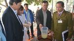 Ngộ độc rượu hàng loạt, Thủ tướng yêu cầu tăng mức phạt
