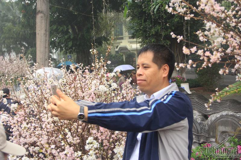Nghìn người đội mưa, tạo dáng bên hoa anh đào