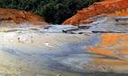 Vỡ đập chứa bùn thải quặng, cá chết hàng loạt