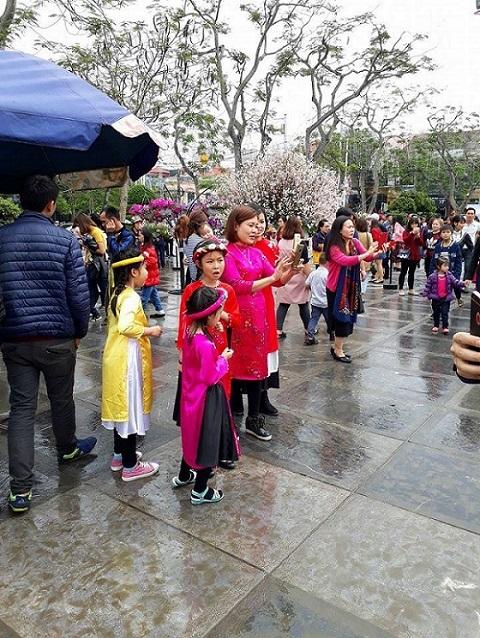 Lễ hội hoa anh đào, Hải Phòng, Nhật Bản, văn hóa